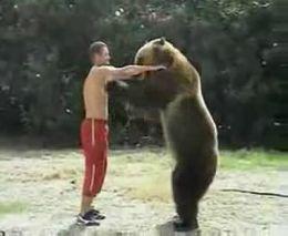 Игры с медведем (1.342 MB)
