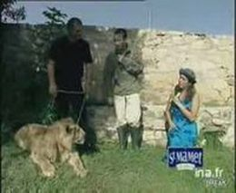 Нападение льва (4.868 MB)