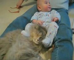 Малыш и кот (1.731 MB)