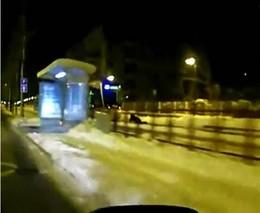 За трамваем на санках (3.750 MB)