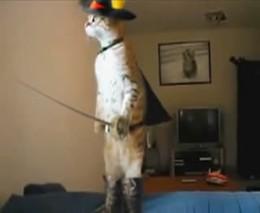 Кот в сапогах (1.756 MB)