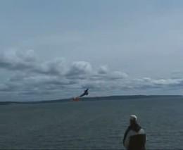 Орел и радиоуправляемый самолет (2.758 MB)