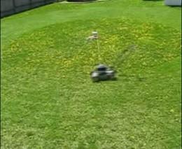 Как ленивые косят траву (1.710 MB)