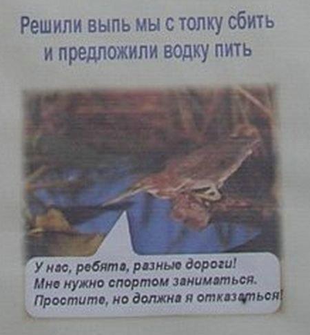 Агитплакат против наркотиков (9 фото)
