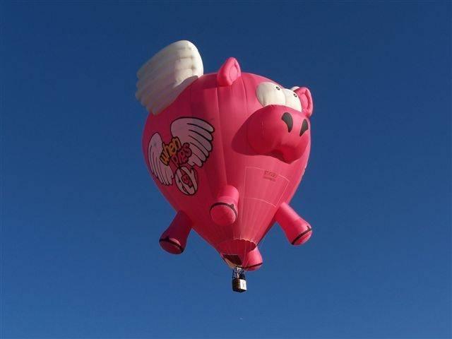 Фестиваль воздушных шаров (19 фото)