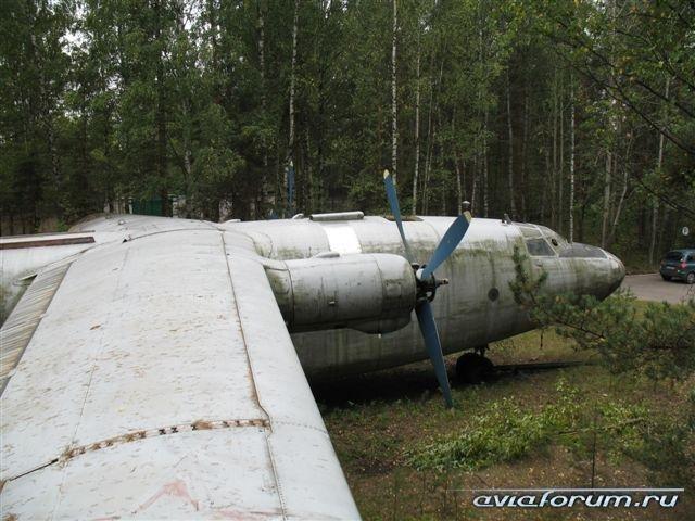 Самолет посреди леса (13 фото)