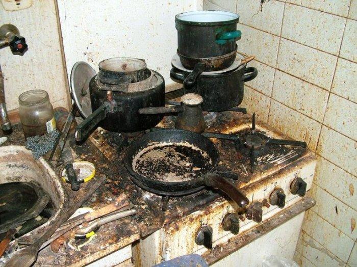 Образец чистоты и уюта (7 фото)