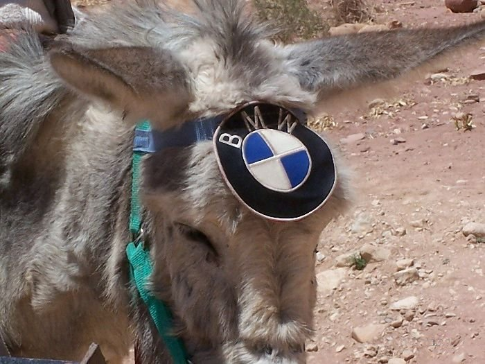 Сенсация! Таджики сделали экологически чистый автомобиль! (3 фото)
