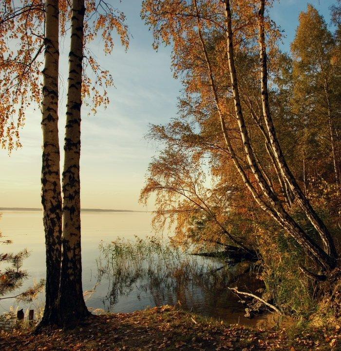 Природа России (14 фото)