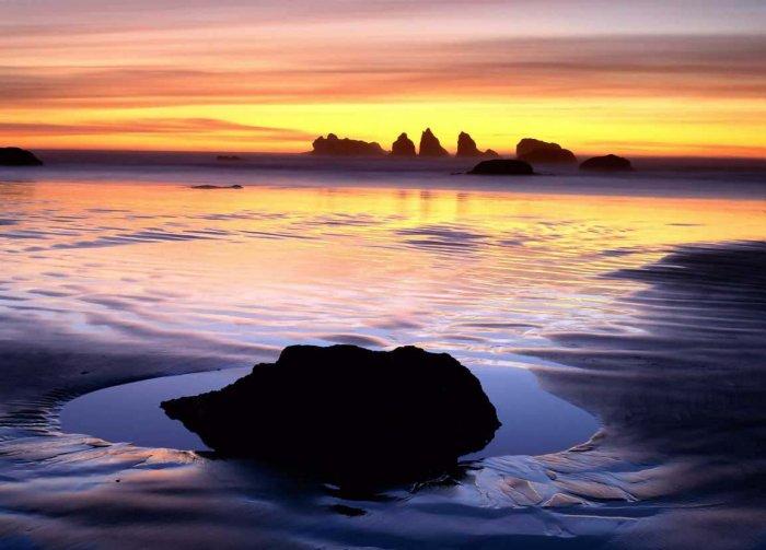Красивые фотографии природы (15 фото)