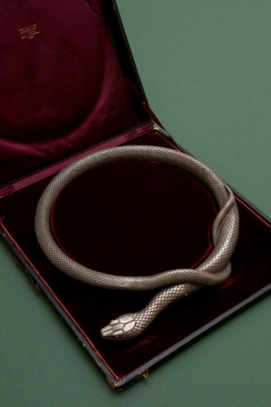 Необычная змея (5 фото)