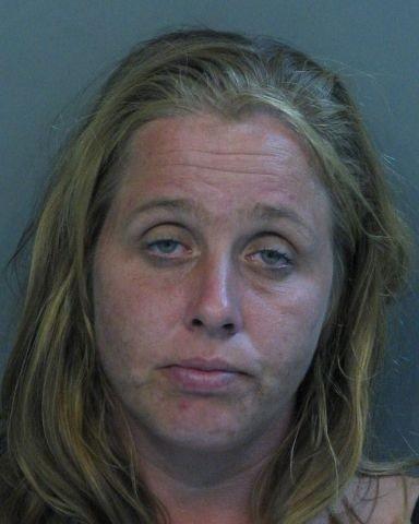 Арестованные проститутки (26 фото)