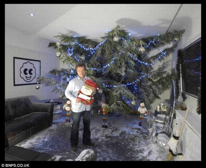 Как установить дома огромную елку (5 фото)
