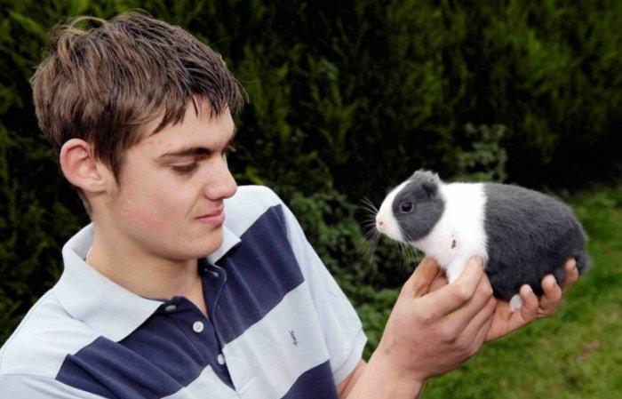 Необычный кролик (4 фото)