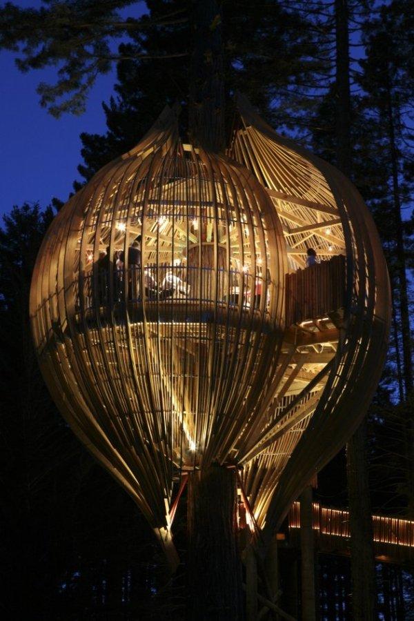 Ресторан на дереве (16 фото)