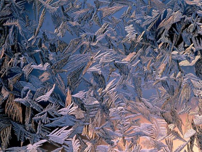 Снежная зима (40 фото)