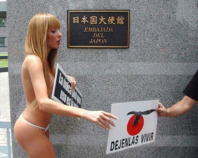 Голый протест (4 фото)