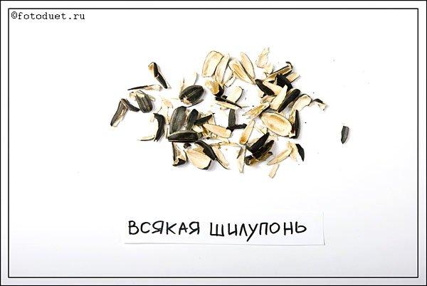 Семки. О жизни риальных пацанов (14 фото)