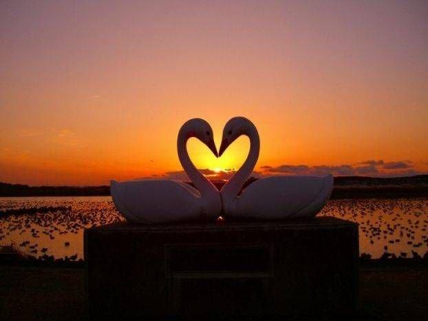 Фотки на тему любви! (40 фото)