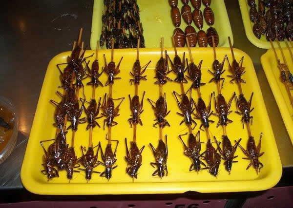 Особенности китайской кухни (11 фото)