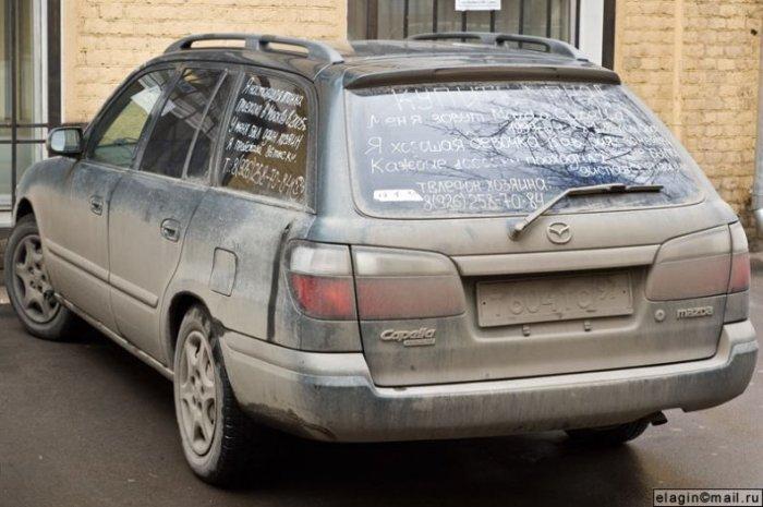 Машина продает себя сама:-) (3 фото)
