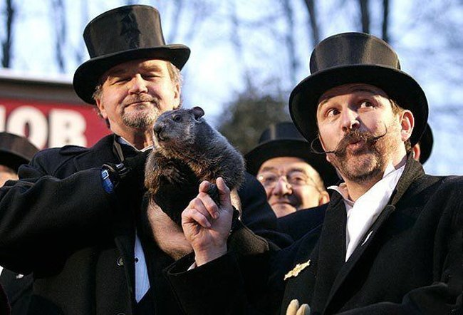 Лучшие фото начала 2008 года по версии Reuters (97 фото)