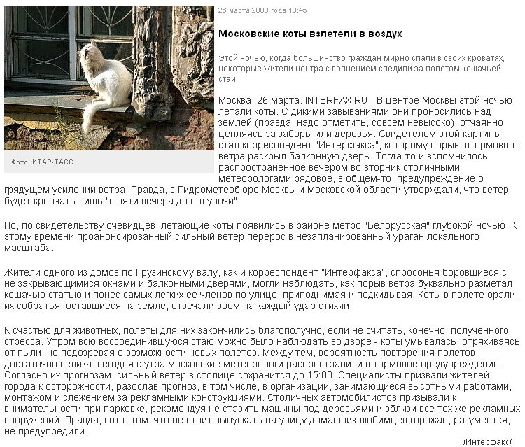 Осторожно! В Москве летают коты!:-) (3 фото)