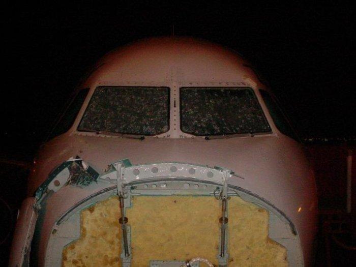 Самолет попал под град (12 фото)