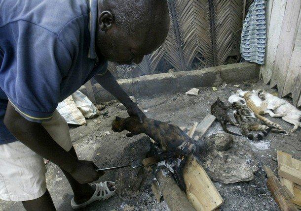 Что едят в африке (7 фото)
