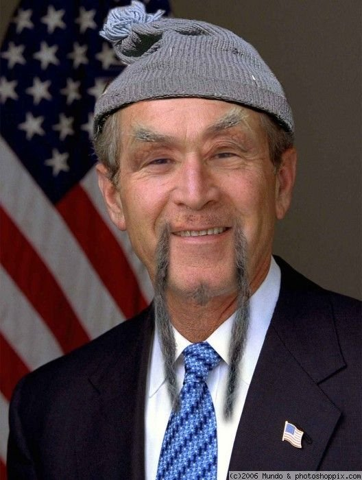 Отжабили Буша (20 фото)