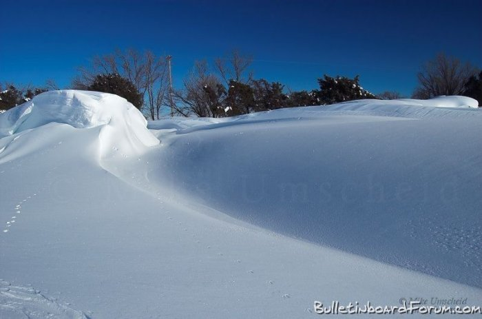Суровая зима (17 фото)