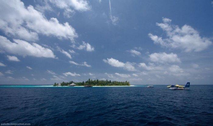 Дайвинг на Мальдивах! (36 фото)