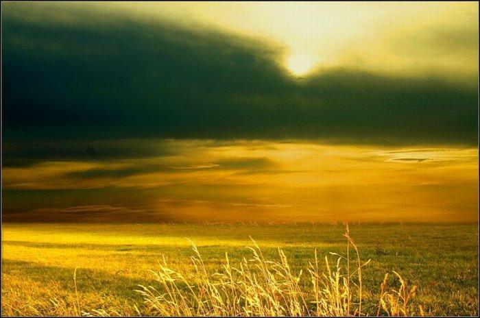 Красивейшие фотографии природы! (36 фото)