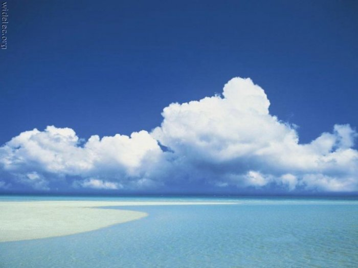 Лето, море, пляж... (23 фото)