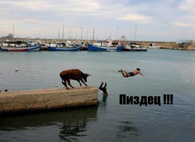 Полный пиз ец! (19 фото)
