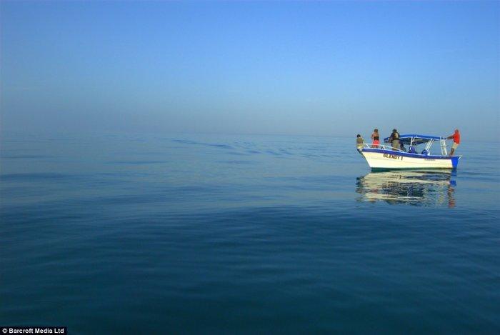 Что увидели люди во время рыбалки (6 фото)