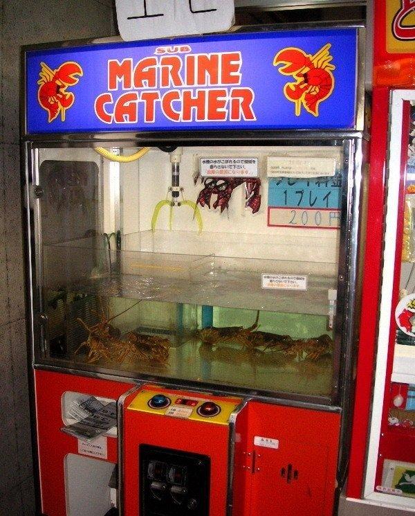 Необычный игровой автомат (5 фото)
