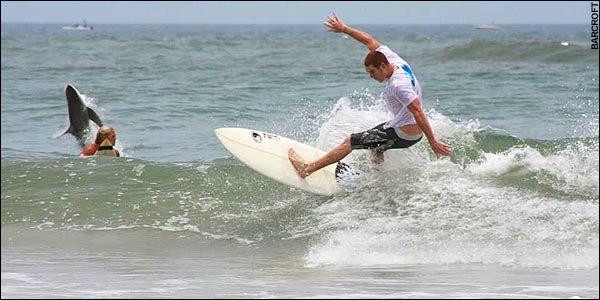 Опасный серфинг (3 фото)