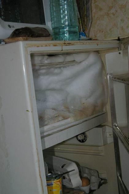 Кому нельзя сдавать квартиру (5 фото)