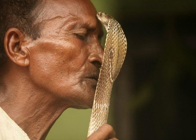 Заклинатели змей