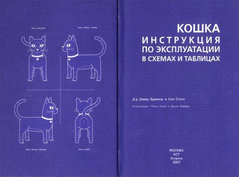 Инструкция по экплуатации кошки (7 фото)