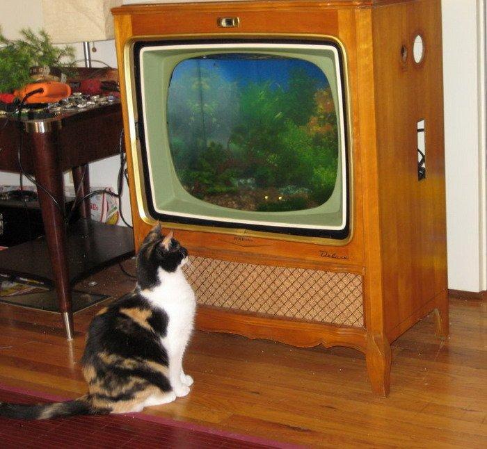 Что можно сделать из телевизора своими руками