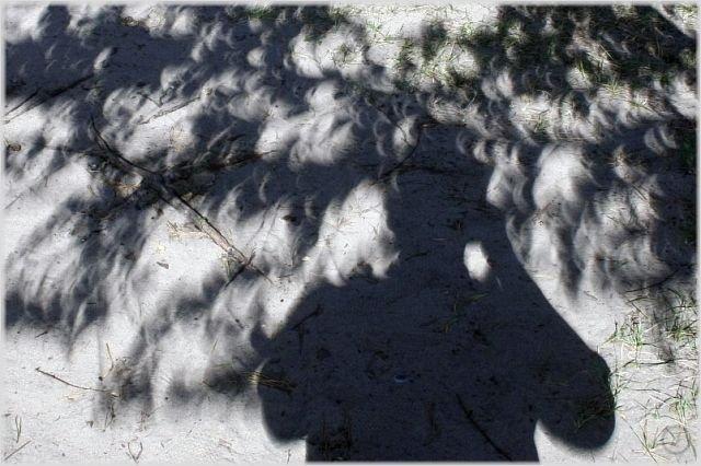 Солнечное затмение 1 августа (23 фото)