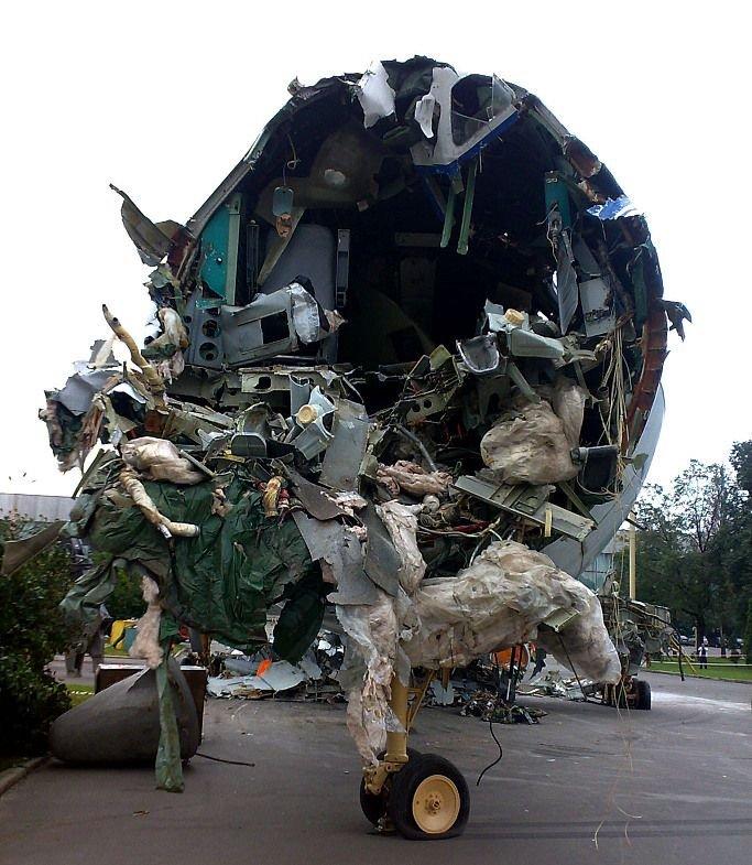 Уничтожение самолетов на ВВЦ (30 фото)