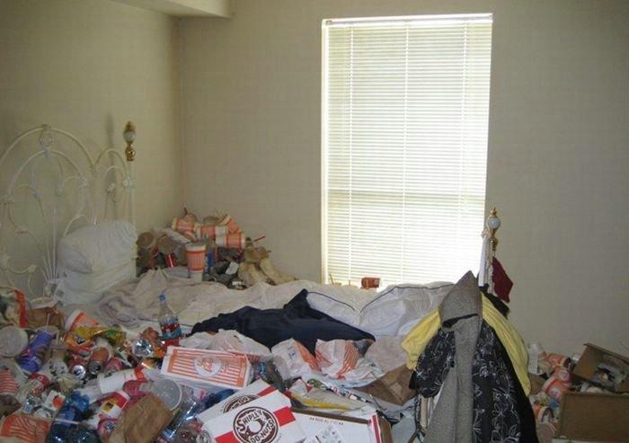 Снимала девушка квартиру... (15 фото)