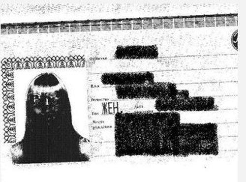 Необычный паспорт (2 фото)