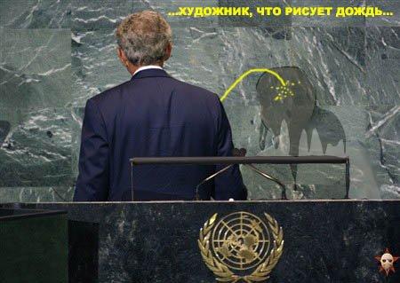 Зажабили Буша (44 фото)