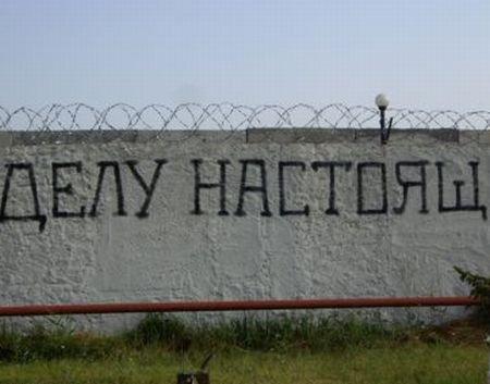 Приветствие от российских солдат (5 фото)