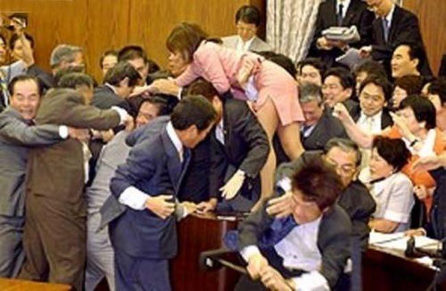 Как принимают законы в Японии (3 фото)