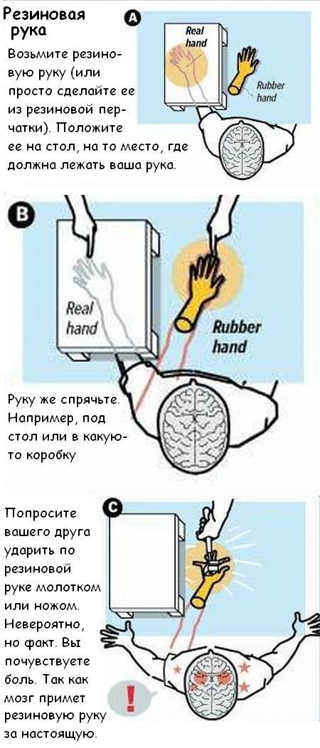 Способы обмануть мозг (5 фото)